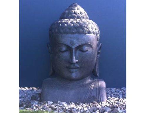 Buddha Kopf im Garten – Familie Aulbach