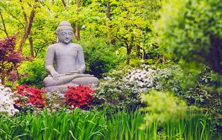 buddha am see