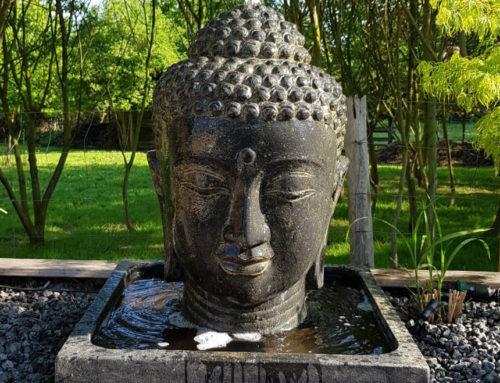 Buddha Brunnen komplett Set mit 75 cm Kopf