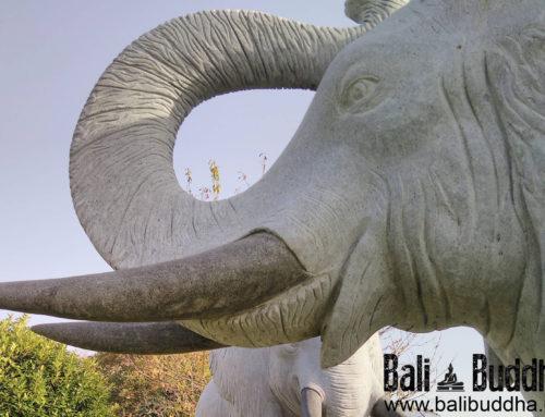 Elefanten für parkähnliche Gartenanlage im Westerwald