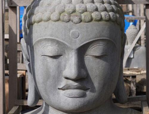Imposante Buddha Büste aus Vollstein